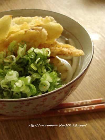 Gobo-Ten Udon