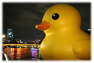 140110duck5.png