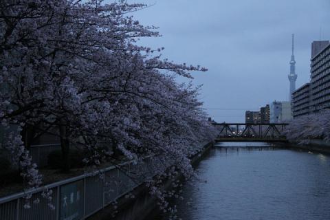 112 仙台堀川
