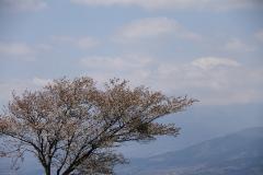 057 大野山