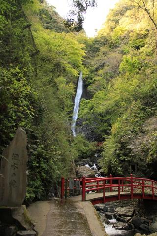 316 酒水の滝
