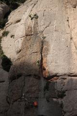 1287 Montserrat