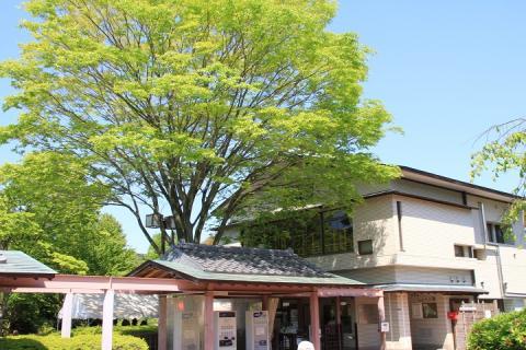 001 横須賀しょうぶ園