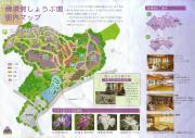 横須賀しょうぶ園ガイド
