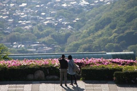 136 湘南国際村