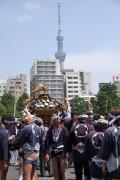 175 浅草 三社祭