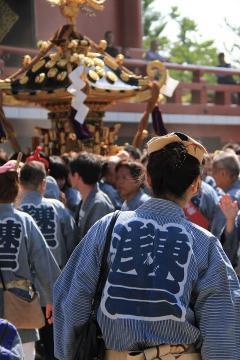 298 浅草 三社祭