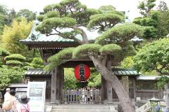 000 長谷寺