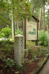 013 最乗寺