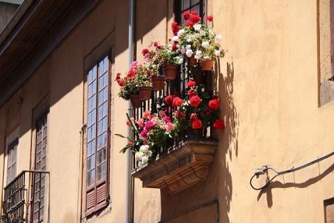 0151 Oviedo