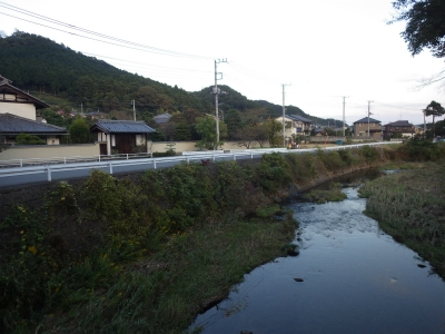 風邪のボーイ (5)