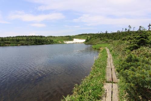 沼沿いの遊歩道