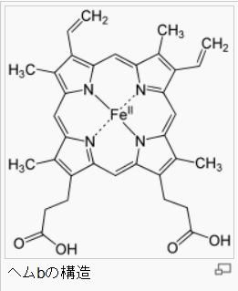ヘムbの構造