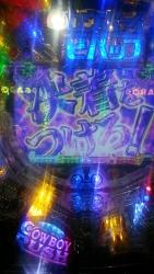 DSC_0377_20141030175416859.jpg