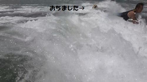 20130706115600(4).jpg