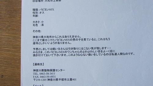 035-2_20130831145803c19.jpg
