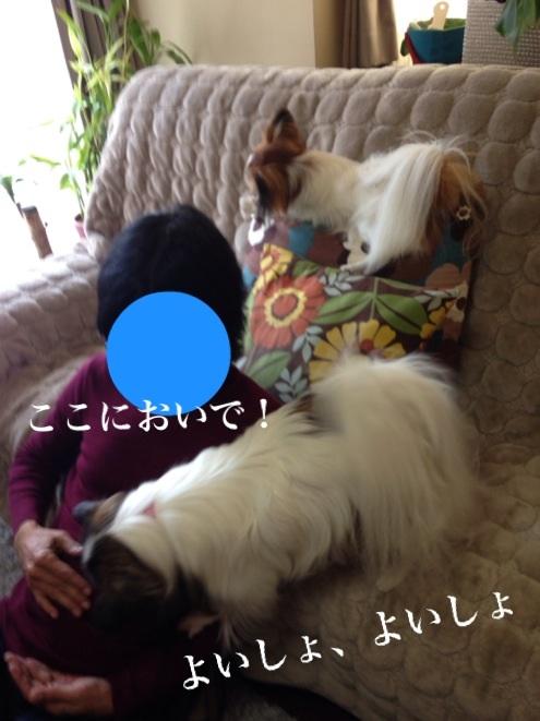 2014010317485918c.jpg