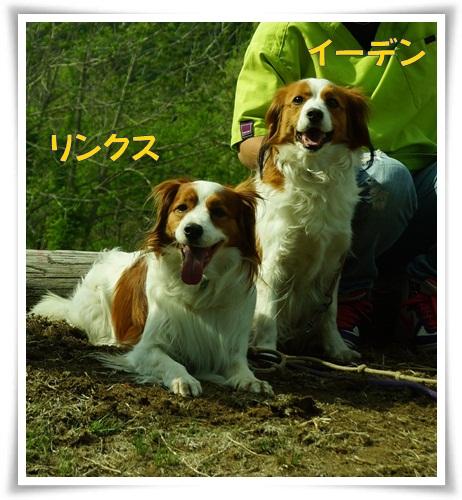 11_20130522235733.jpg