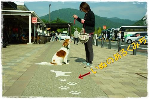 3_20130520222413.jpg