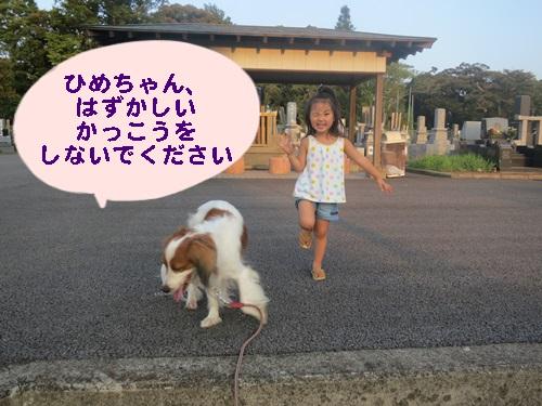 3_20130818141020f69.jpg