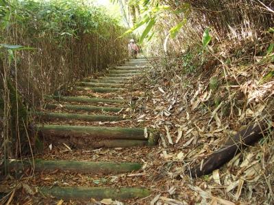 5登山道2