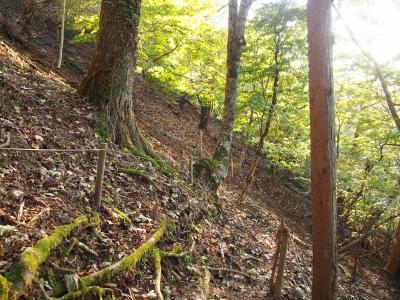 7登山道3