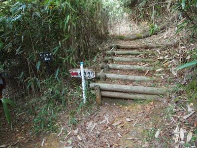 8登山道4