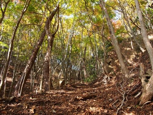 3越敷岳 登山道2