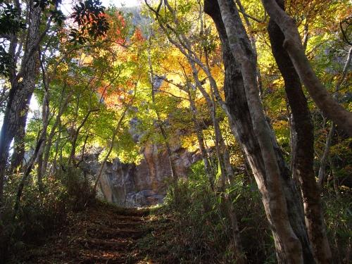 5越敷岳 登山道1