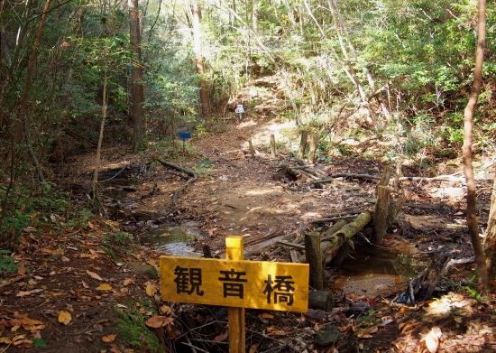 2観音岳登山道3