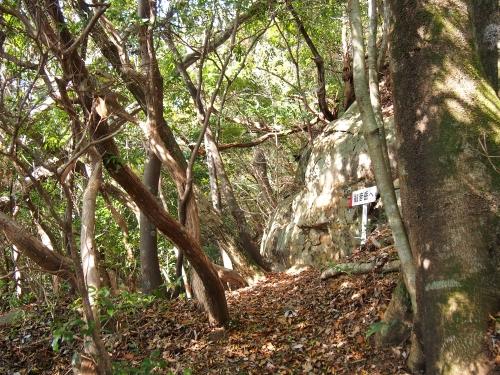 5観音岳登山道2