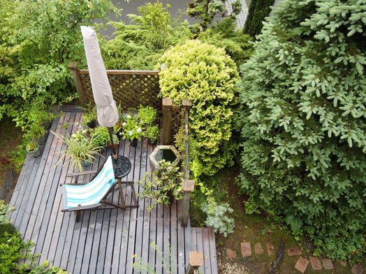 my-garden 083 (2)