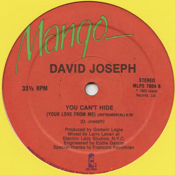 DG_DAVID JOSEPH_YOU CANT HIDE_201305