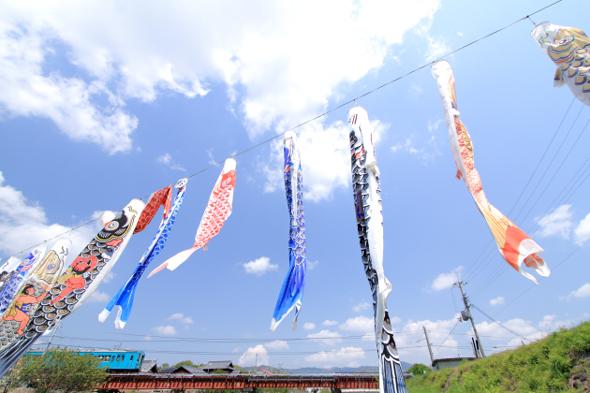 2013/4/27 JR和歌山線 粉河~名手