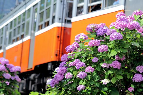 2013/6/29 箱根登山鉄道 小涌谷~彫刻の森