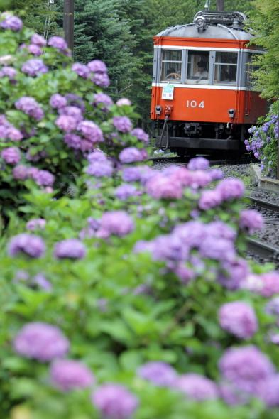 2013/7/5 箱根登山鉄道 彫刻の森