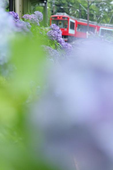 2013/7/4 箱根登山鉄道 大平台