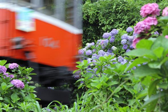 2013/7/4 箱根登山鉄道 小涌谷~彫刻の森
