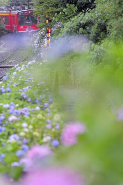 2013/7/5 箱根登山鉄道 小涌谷~彫刻の森