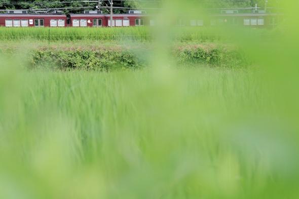 2013/7/27 能勢電鉄 ときわ台~妙見口