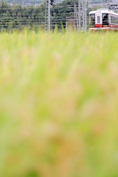 2013/9/7 南海高野線 橋本~紀伊清水
