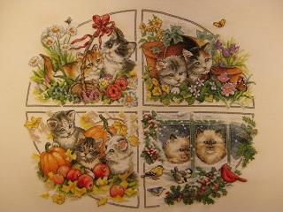 四季猫全体