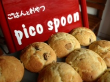 picospoonの小さな毎日 part2-__.JPG