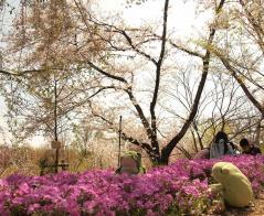 Higashiyama Botanischer Garten