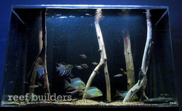 satellite-led-aquarium.jpg