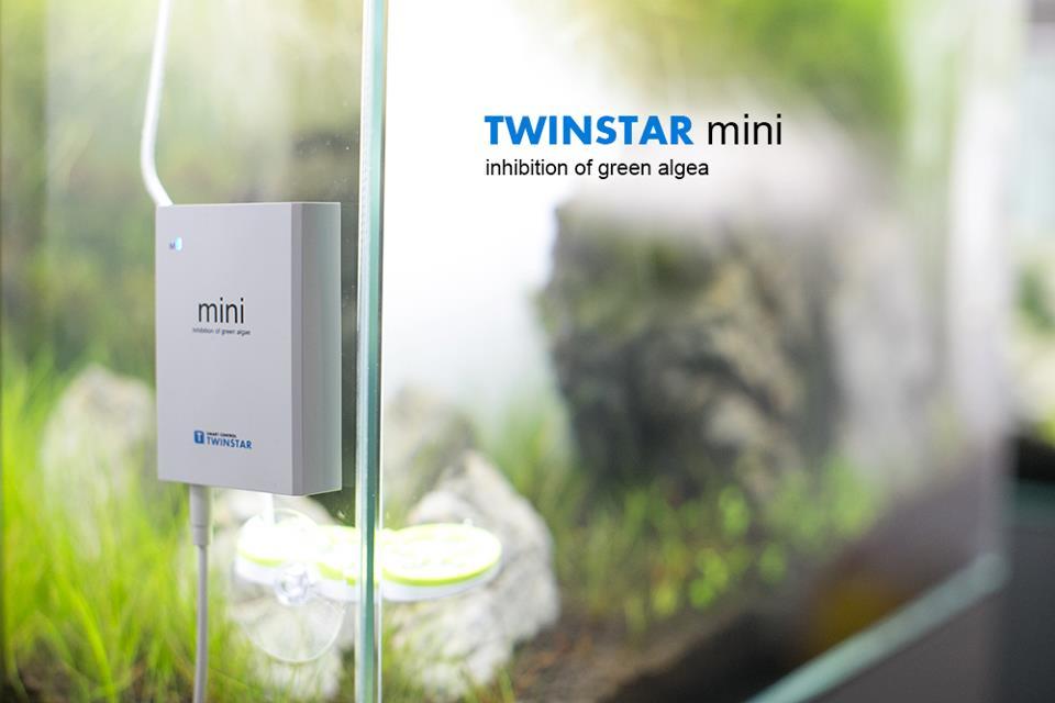 twinstar37.jpg