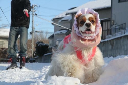 2014雪走り初め6