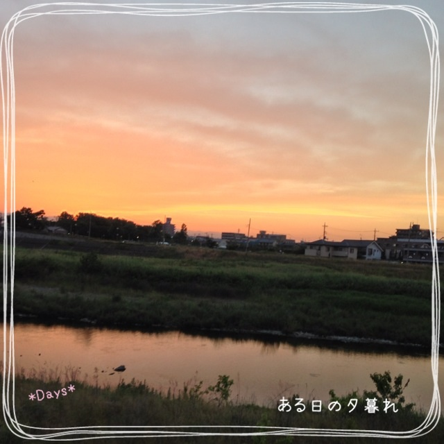 image_20130605002904.jpg