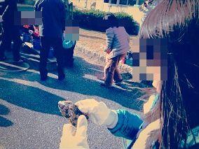 s-牡蠣うち_3