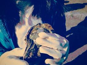 s-牡蠣うち_2